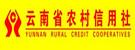 云南农村信用社信用卡申请